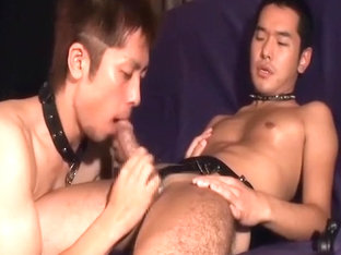 Sweet asian guys enjoy each other
