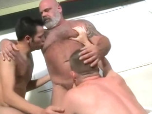 Daddy Bear Chest Worship Compilation