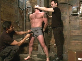Mr Morgan Black is taken beaten edged and milked