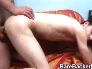Large Pecker Bareback Homosexual