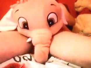 Orange elephant love two