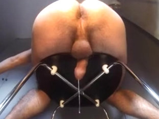 milking session with orgasms