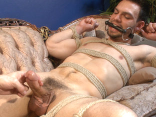 Muscular Stud, Jason Maddox, Begs to Cum In bondage for the First Time