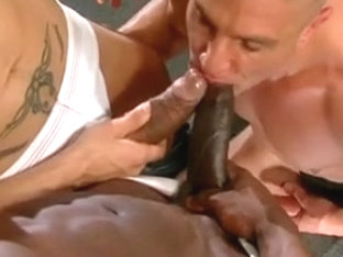 Wild Big Cock Bareback 3 Some Interracial