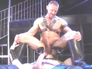 Leather top dominates a bear