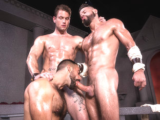 Erectus  - Raging Stallion