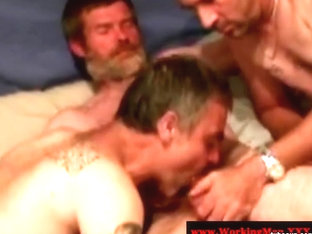 Hairy southern bears assfucking threeway