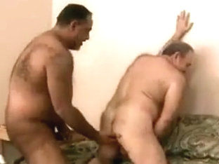 Pair of bears fucking on bed