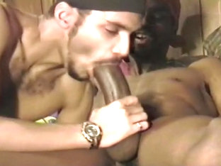 Closet Ebony Gays Have Secret Rough Oral