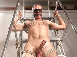 Straight stud bound, edged and milked multiple loads