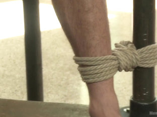 Muscled straight stud has his cock edged to the max