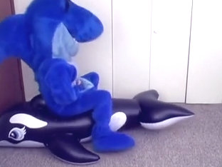 Blueup Shark in Shark vs Orca Whale fursuit inflation blowup