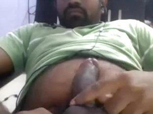 Hot indian bear