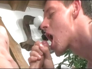 Skinny twinks in passionate gay anal action
