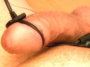 electro estim pleasure 046-20141003 short