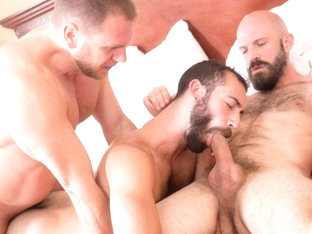 Hans Berlin, Mickey Carpathio and Stephen Harte - BarebackCumPigs