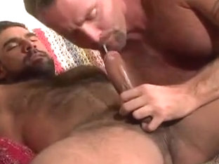 Bear Suck Hot Cock In Pov ..