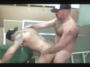 Strong Bears - Bronson & Damian