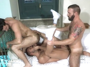 The Tourist - Raging Stallion