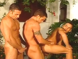 Hot Oral and Anal Sex For Trio