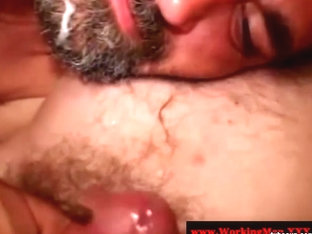 Hairy southern bear sucked and tugged