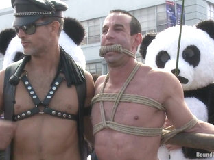Bound in Public. Naked Pandas Trick or Treat Just in time for Halloween