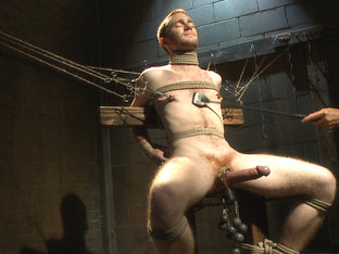 Seamus O'Reilly - The Pit - The Chair - The Gimp Room