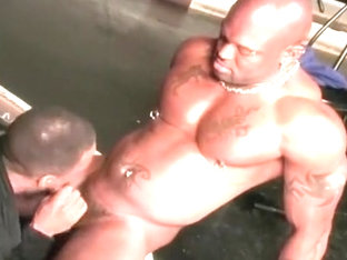 Best male in exotic interracial homosexual adult video