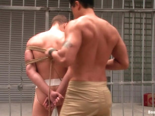 BoundGods : Bonus Update Van Wolf and Rico at the 2008 Up Your Alley Fair
