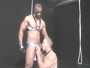 Horny male in exotic sports, fetish homosexual adult video