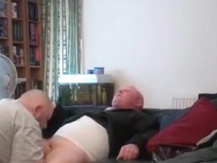Plump Bear blows his brother-in-law