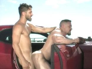 Auto-stoppeurs en chaleur