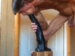 Stallion Dildo Extreme BDSM Anal