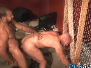 Mature macho bears jizz