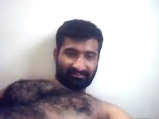 Very Hairy Indian Malayali Bear