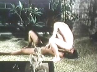 Vintage Gays Stroking and Sucking