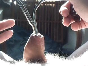 Foreskin sunlight cumshot !