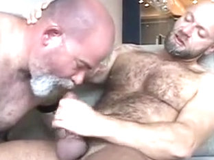 Hairy Balls Bounce