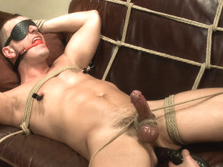 Hot physique model is curious about edging and bondage