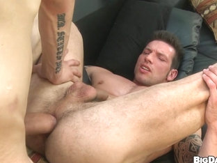 Bareback hunks - BigDaddy