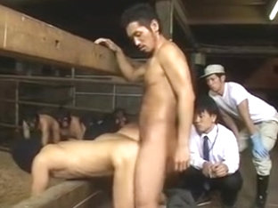 (Fresh Raunchy) Homo Milk Farm-02