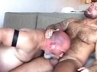 2 bear engulf and cum
