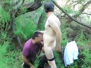Amateur cruising in the woods IV