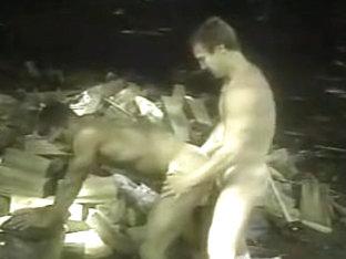 Gay Sex in Woods