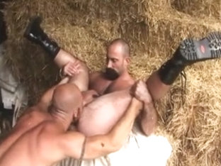 SHAGGY HUNX COARSE AND WILLING