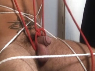 Horny male pornstars Tristan Mathews and Steven Richards in hottest bears, bondage homosexual porn.