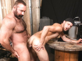 Bear Hug Video - PrideStudios