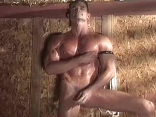 sex in barn