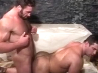 muscle bears fucking