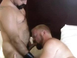 big hairy bears fucking bareback